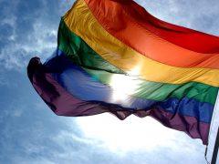 17 mai, Journée internationale contre l'homophobie et la transphobie