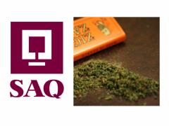 <span class=&#039;surtitre&#039;>Commerce légal du cannabis récréatif au Québec</span><br/>Rejeter la SAQ serait une grave erreur