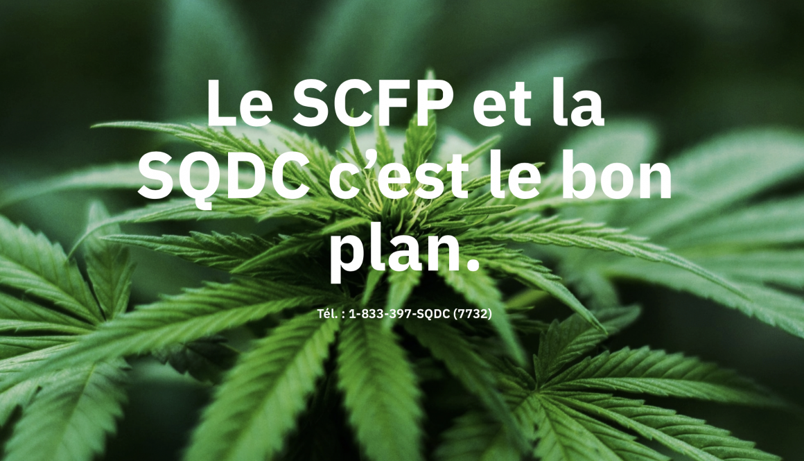 Le SCFP représentera des employés de la SQDC